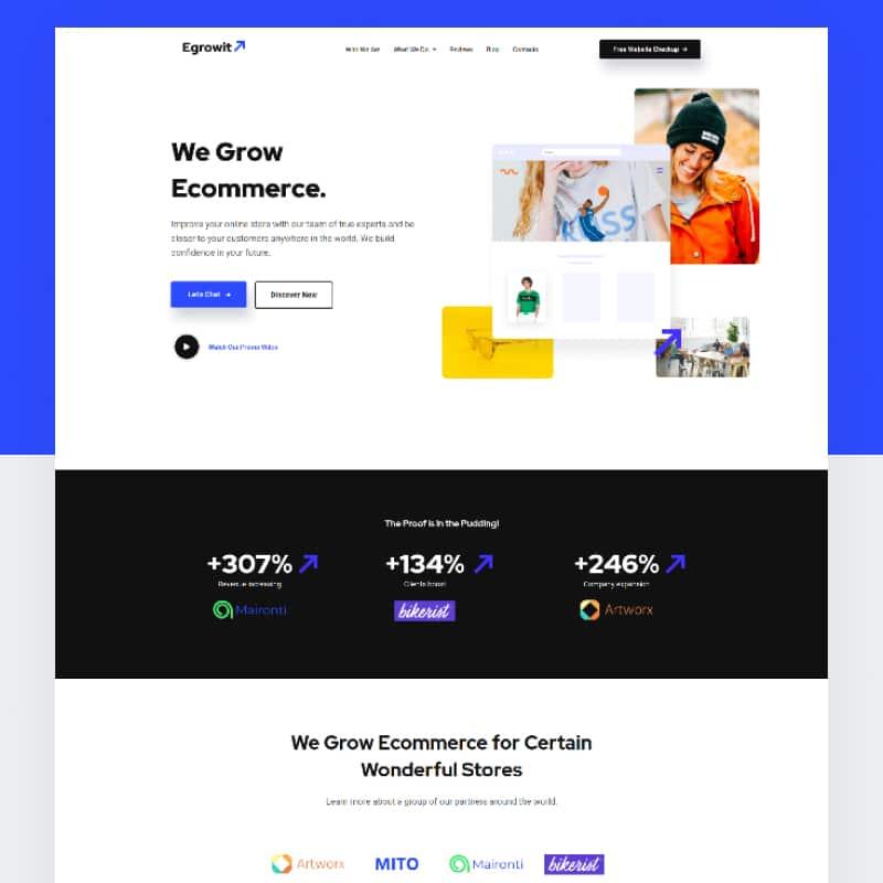 WordPress-Theme Egrowit