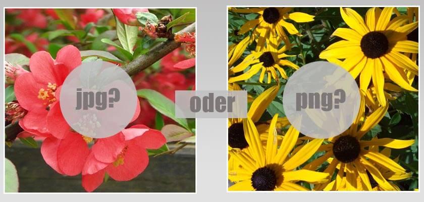 Wann .jpg und wann .png verwenden: Das richtige Bilddateiformat für den Blog