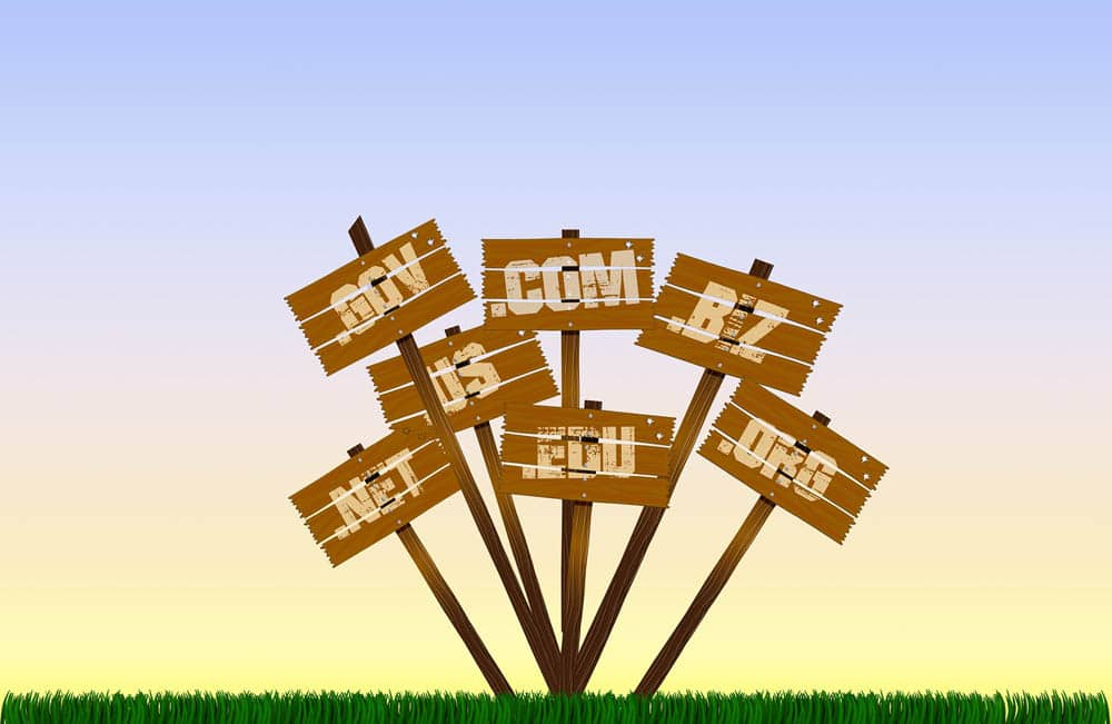 Mit der eigenen Domain Geld verdienen