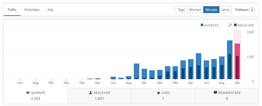 Website Besucher pro Monat