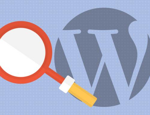 8 Plugins, mit denen du die interne Suche in WordPress/ WooCommerce verbessern kannst