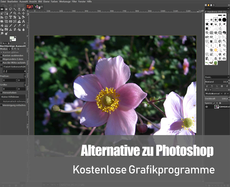 Alternative zu Photoshop