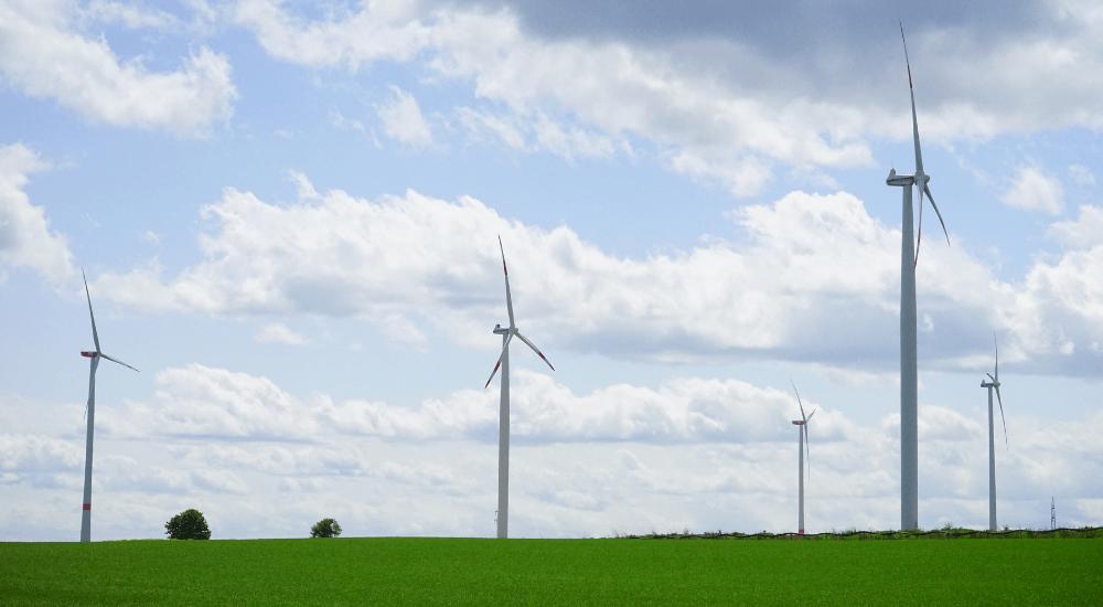 Crowdfunding für nachhaltige Projekte: Vorstellung von zwei Plattformen