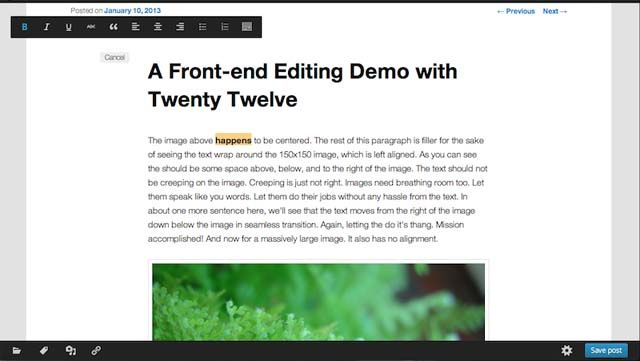 Front-End-Editor in WordPress