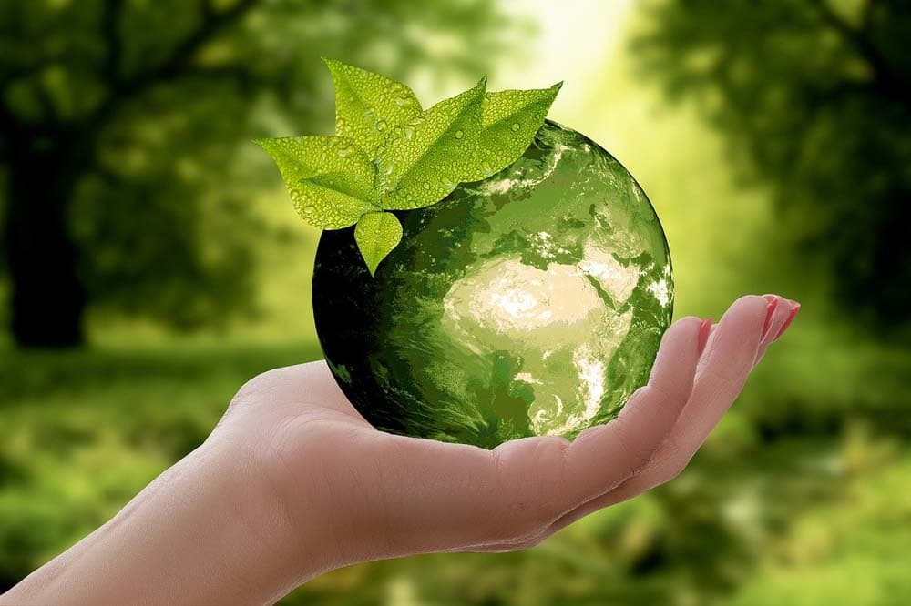 Geschäftsideen mit der Nachhaltigkeit
