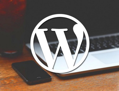 Top 10 WordPress-Begriffe für Newbies