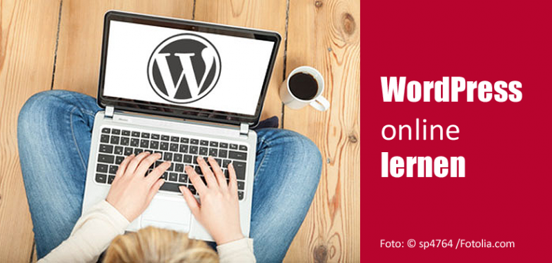 WordPress online lernen: WordPress-Schulungen im Internet
