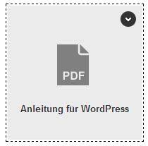 Xing - PDF-Icon